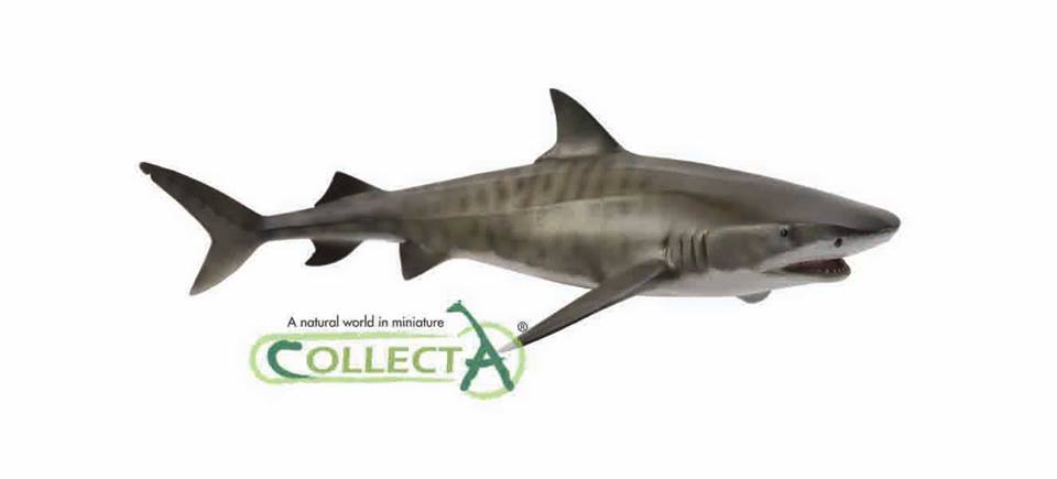 Mako Shark Toys : Collecta new for animal toy forum